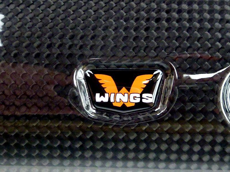 wings-details-06